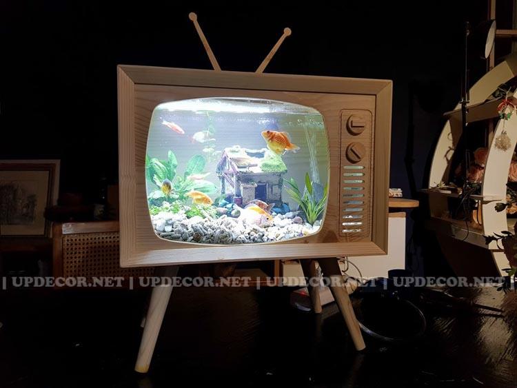 Bể cá cảnh thủy sinh mini để bàn chính là một chiếc mô hình tivi gỗ rất độc đáo và ấn tượng