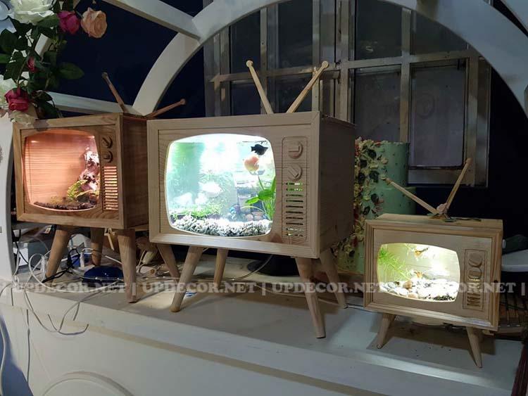Bể cá thủy sinh mini kiểu mô hình tivi gỗ rất phù hợp để trang trí tại bàn làm việc