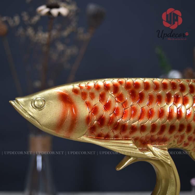 Chi tiết phần đầu của con cá rồng rất giống một chú cá thật