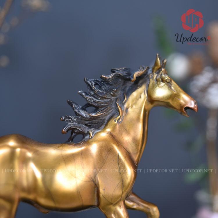 Hình ảnh bờm ngựa đang tung bay trong gió trông rất sống động và tự nhiên